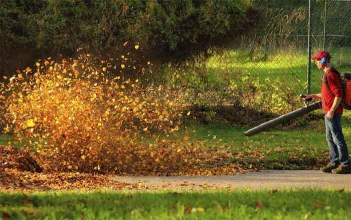 Quietest Leaf Blowers