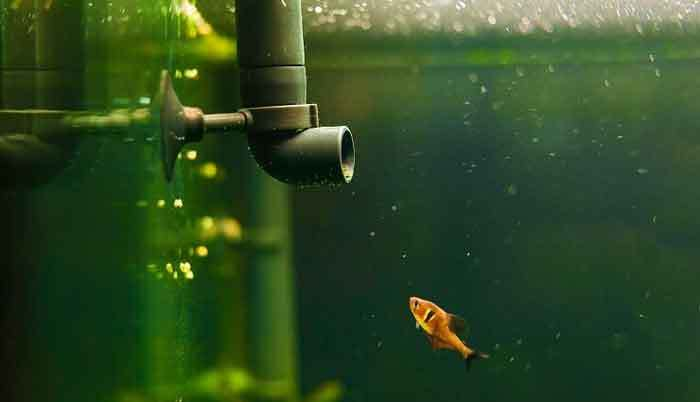 how to reduce noise in fish tank filter