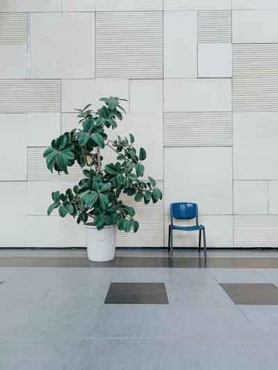 soundproof-walls